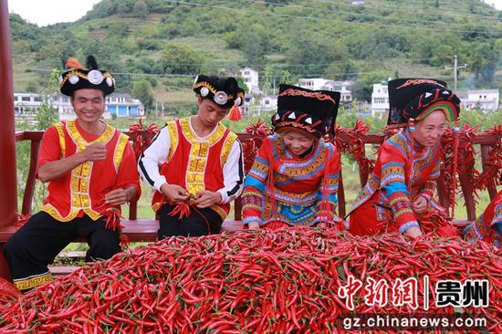 黔西市协和镇:金秋十月庆丰收