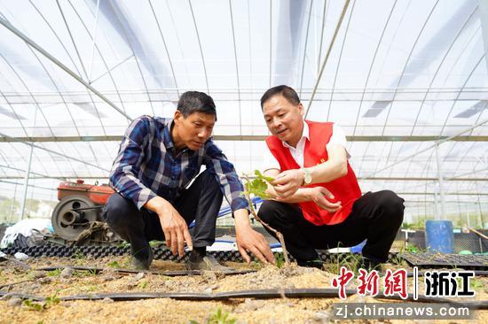 南浔区组织党员专家为农户传授技术  李永超 摄