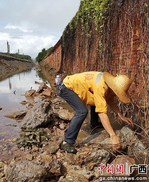 玉林工务段组织职工顶风冒雨巡查线路,及时发现和清理堵塞的排水沟,确保台风期间排水设备通畅。谭育俊  摄
