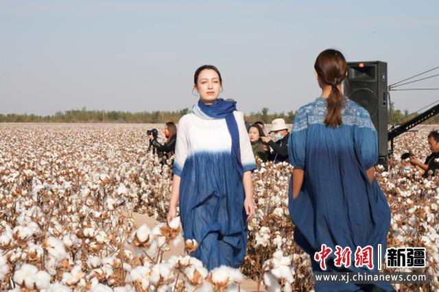 国家棉花产业联盟举办首届绿色棉田秀