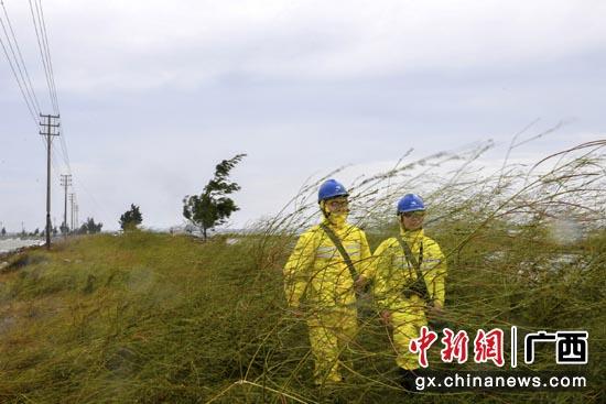 10月13日,南方电网广西钦州供电局党员突击队对沿海供电线路进行特巡。马华斌 摄