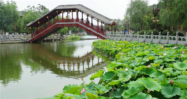 Refreshing summer scene in Kaifeng city