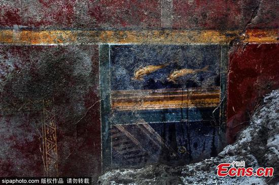 Dolphins painting found in Pompeii ruins