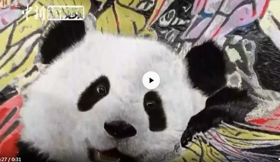 AI-aided 3D embroidered panda